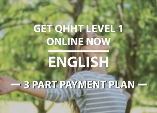 3 part payment Plan for Webinar Level 1 Online