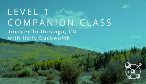 Level 1 Companion Course with Holly Duckworth