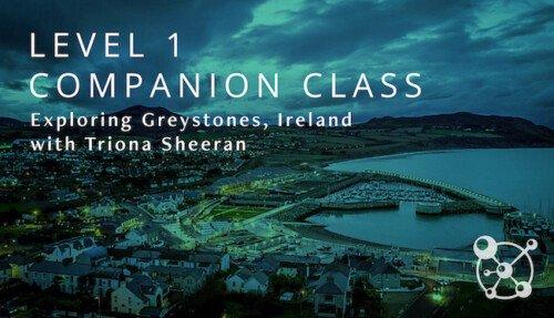 Level 1 Companion Ireland