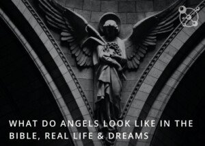 What Do Angels Look Like?